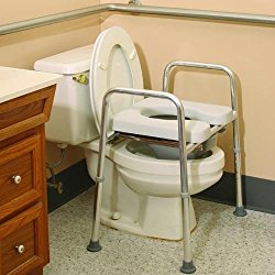 Surprising Here Are The Benefits Of Using A Raised Toilet Seat After Inzonedesignstudio Interior Chair Design Inzonedesignstudiocom